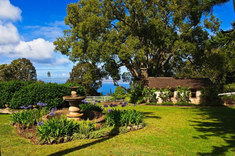 The garden at Tedeschi Vineyard, Maui's winery