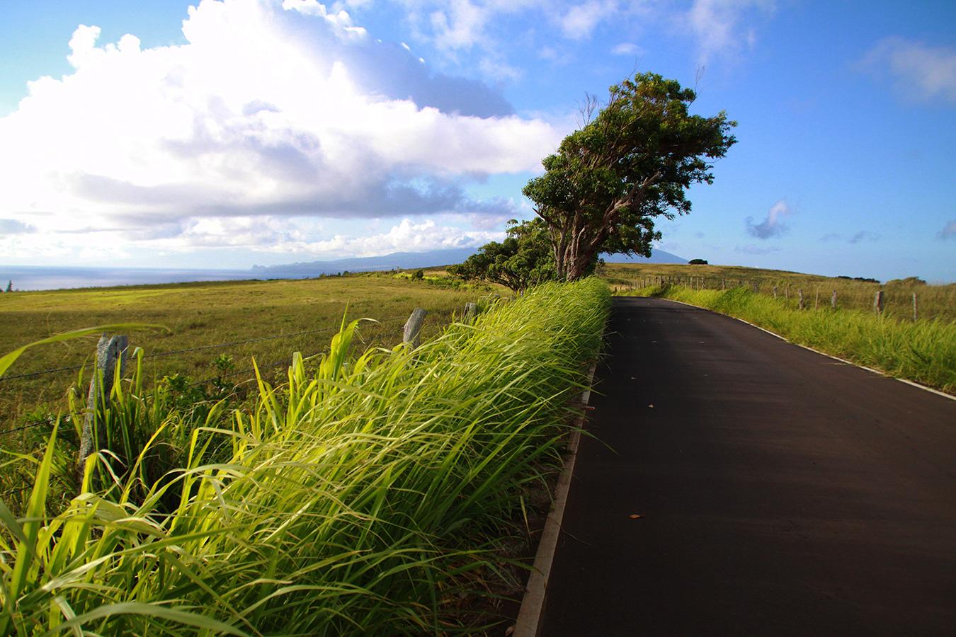 molokai road