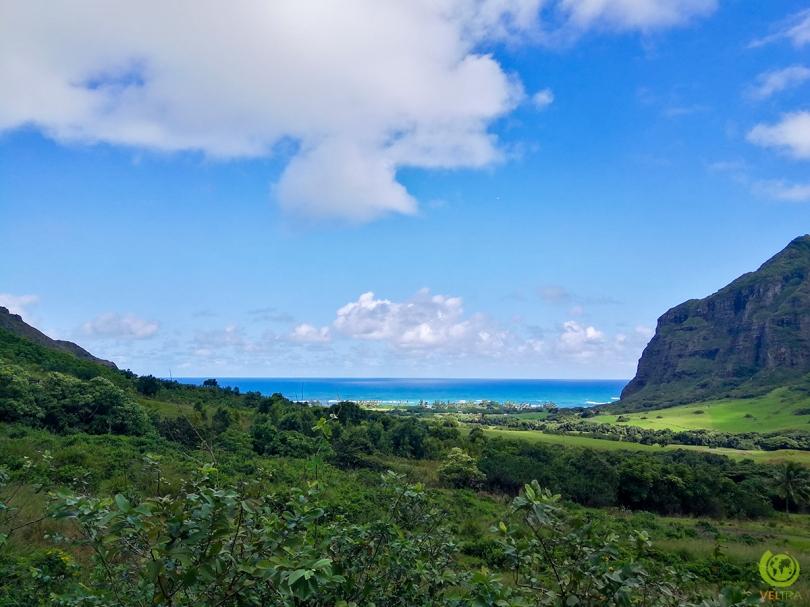 oceanview 3