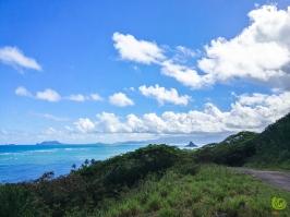 oceanview 4